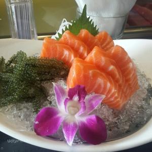 Salmon Sashimi Ichiba Sushi