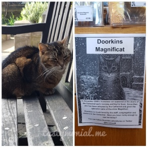 Doorkins Magnificat