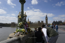Flower Bouquet at Westminster Bridge