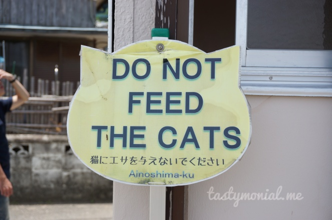 Do Not Feed The Cats sign