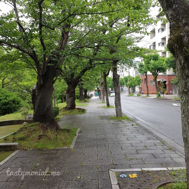 On the way to Urakami Cathedral