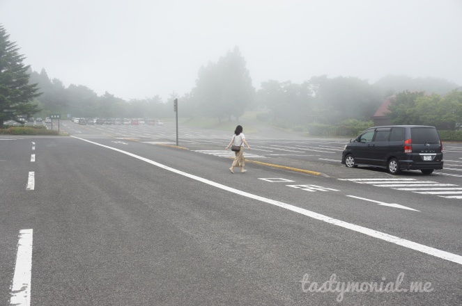 Foggy morning in African Safari Beppu