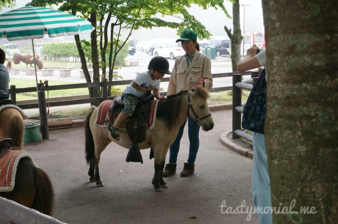 Pony riding african safari beppu