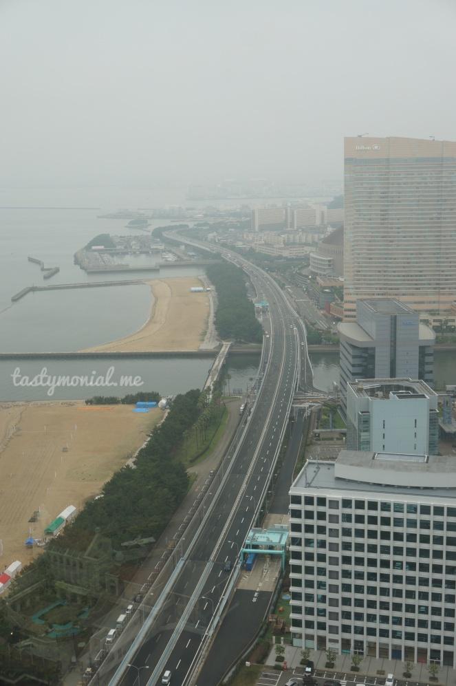 View from Fukuoka Tower
