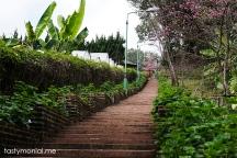 Garden in Bhubing Palace