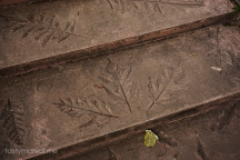 Leaves art stone stair