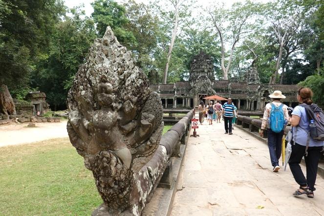 Ta Prohm Temple Angkor Cambodia