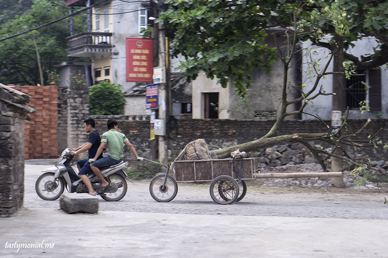 two people and a tree ninh binh people