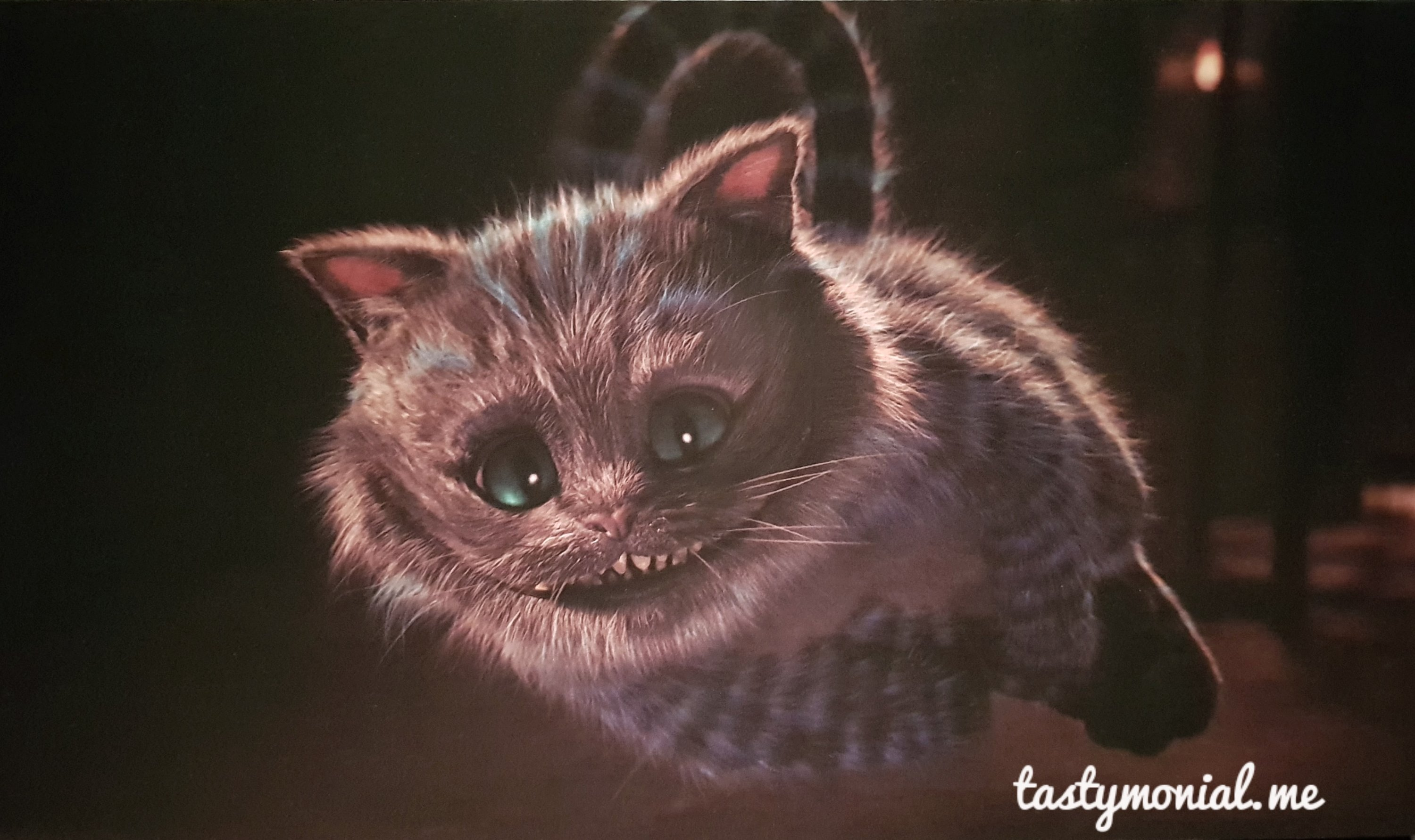 A Drawing of Cheshire Cat
