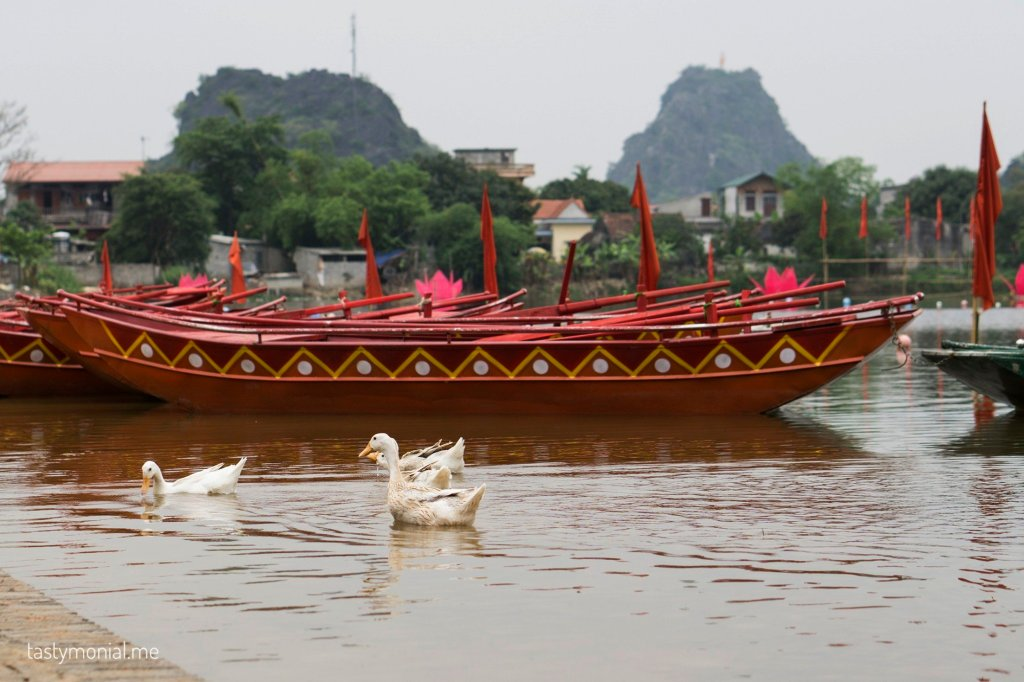 boats festival ninh binh old town