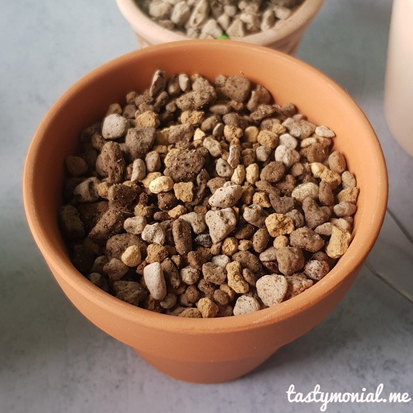 Pumice Akadama Lithops Soil Mixed